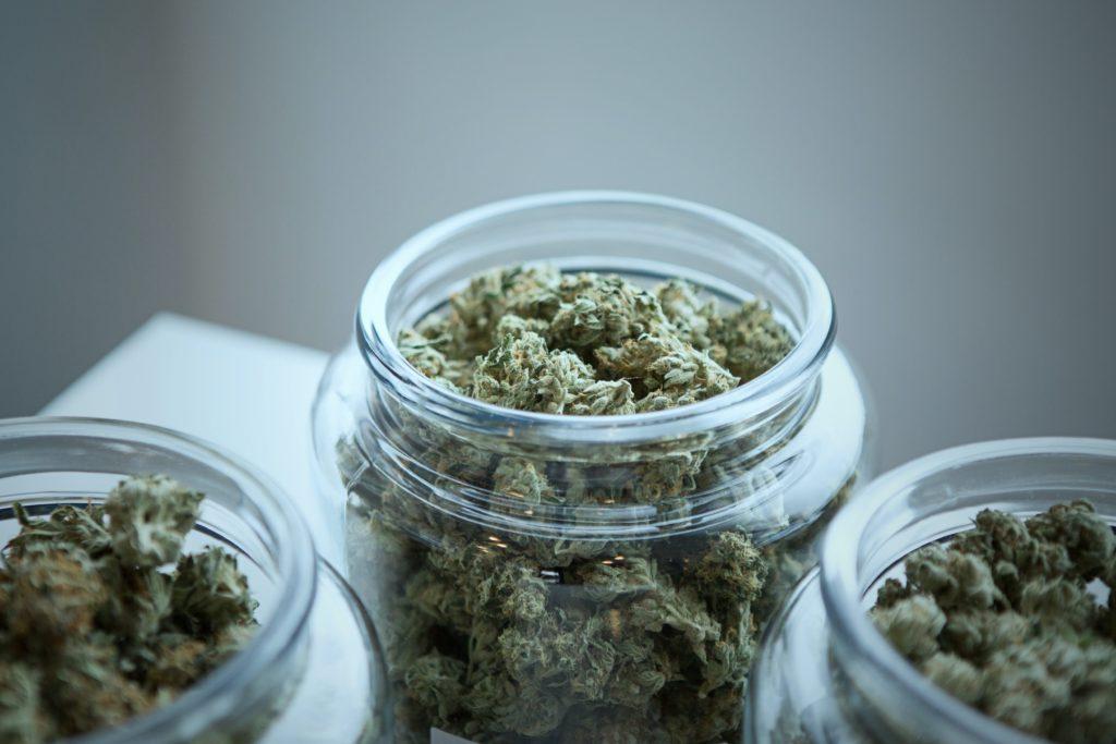 ilegal-herb