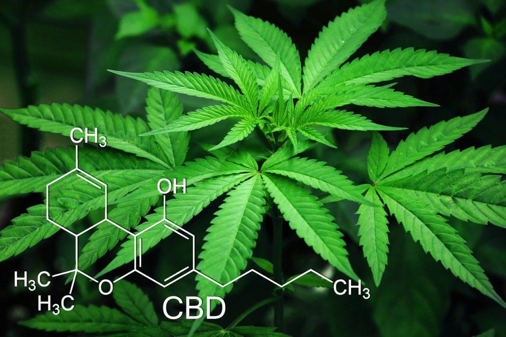 CBC(カンナビクロメン)とは CBDとの違い、効果効能と摂取方法について解説