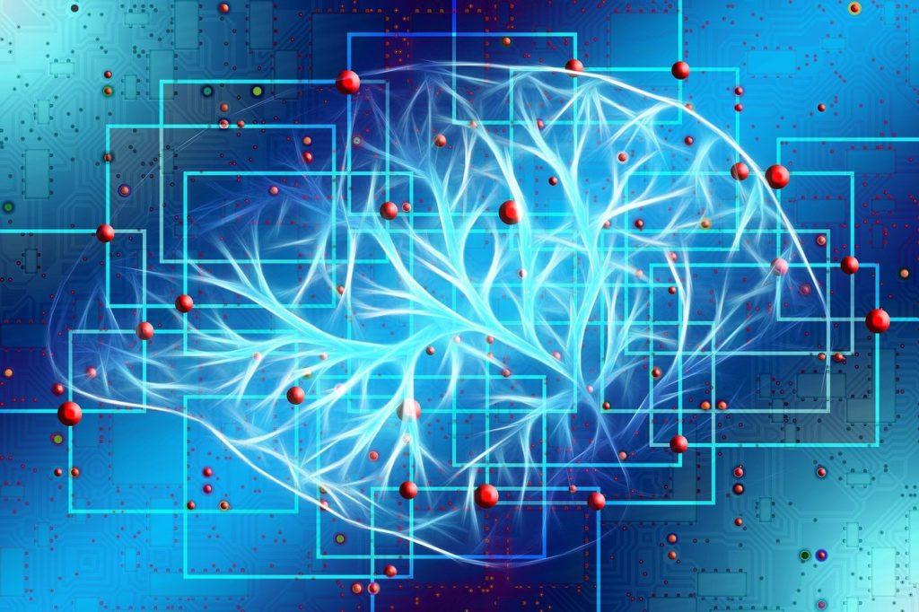 CBDは脳内物質の分泌に影響あるの?アドレナリンやエンドルフィンとの関係とは